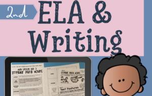 irregular-plural-nouns-worksheets