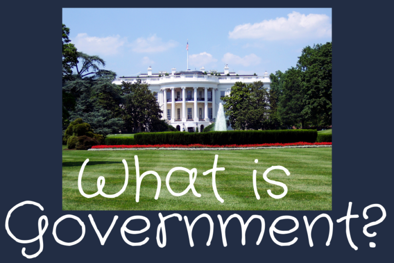 what-is-government